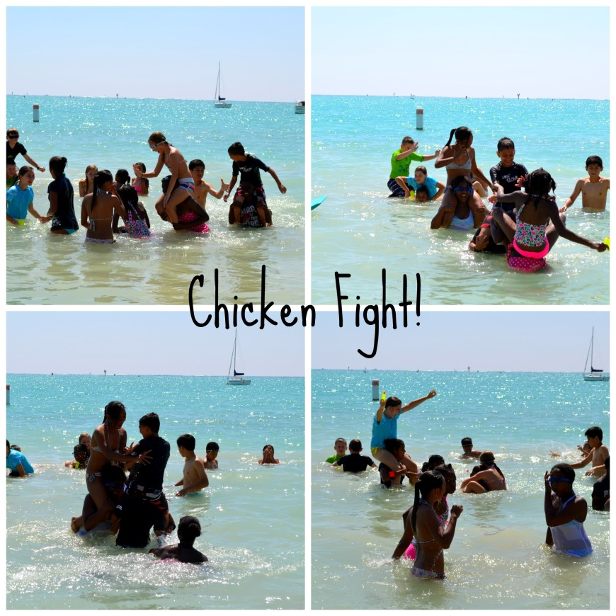 chicken fight